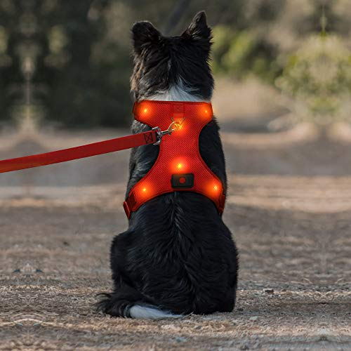 DOMI LED Dog Harness, USB Rechargeable Reflective Pet Vest Harness with Comfortable Padded & Adjustable Belt Suit for Small/ Meium/ Large Dog (S,Red)