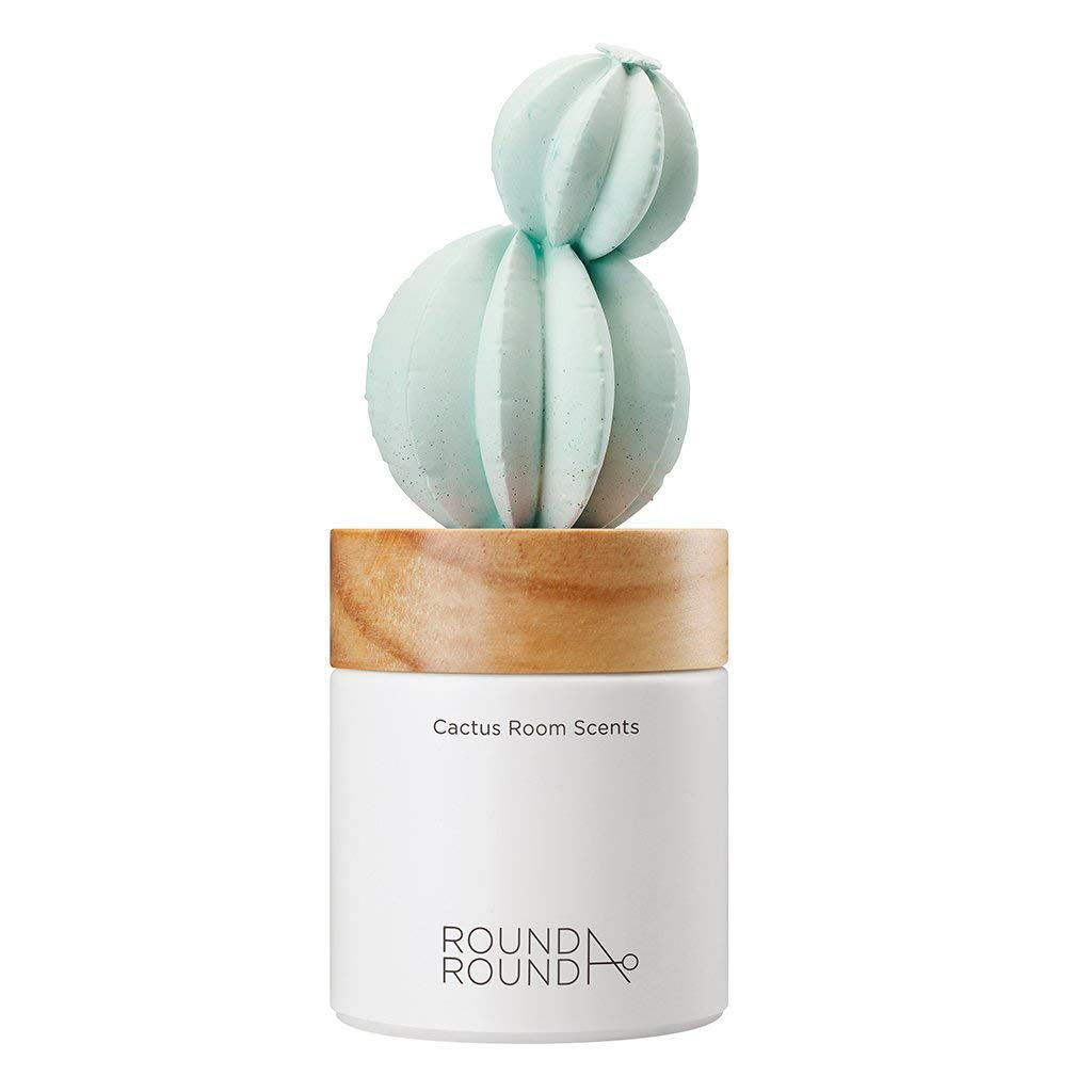 ROUND A'ROUND Cactus Room Scents 100ml / Gypsum Reed Fragrance Diffuser for Fragrant Homes, Rooms, Office, Bathroom, Living Room, Great Home Fragrance Gift (Goldenbarrel Cactus) by ROUND A'ROUND (Image #2)