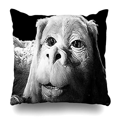 Ahawoso Throw Pillow Cover Square 18x18 Inches Falkor The Luck Dragon from The Neverending Story Design Decorative Pillow Case Home Decor Pillowcase