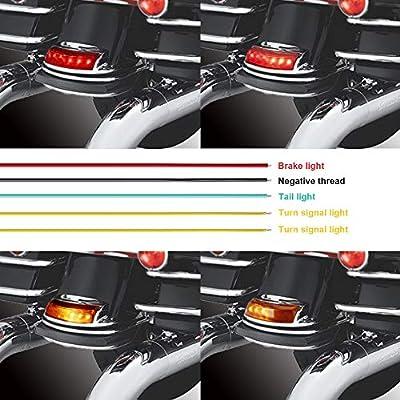 NTHREEAUTO Rear Fender Tip Lights, LED Turn Signal Brake Taillight Compatible with Harley Road King, Electra Road Glide, Ultra Classic, FLHTC, FLHTCU, FLHTCUL, FLHTK, FLHTKL and FLTRU: Automotive