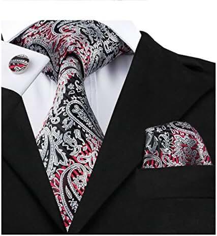 Hi-Tie Vogue Paisley Business Tie Set