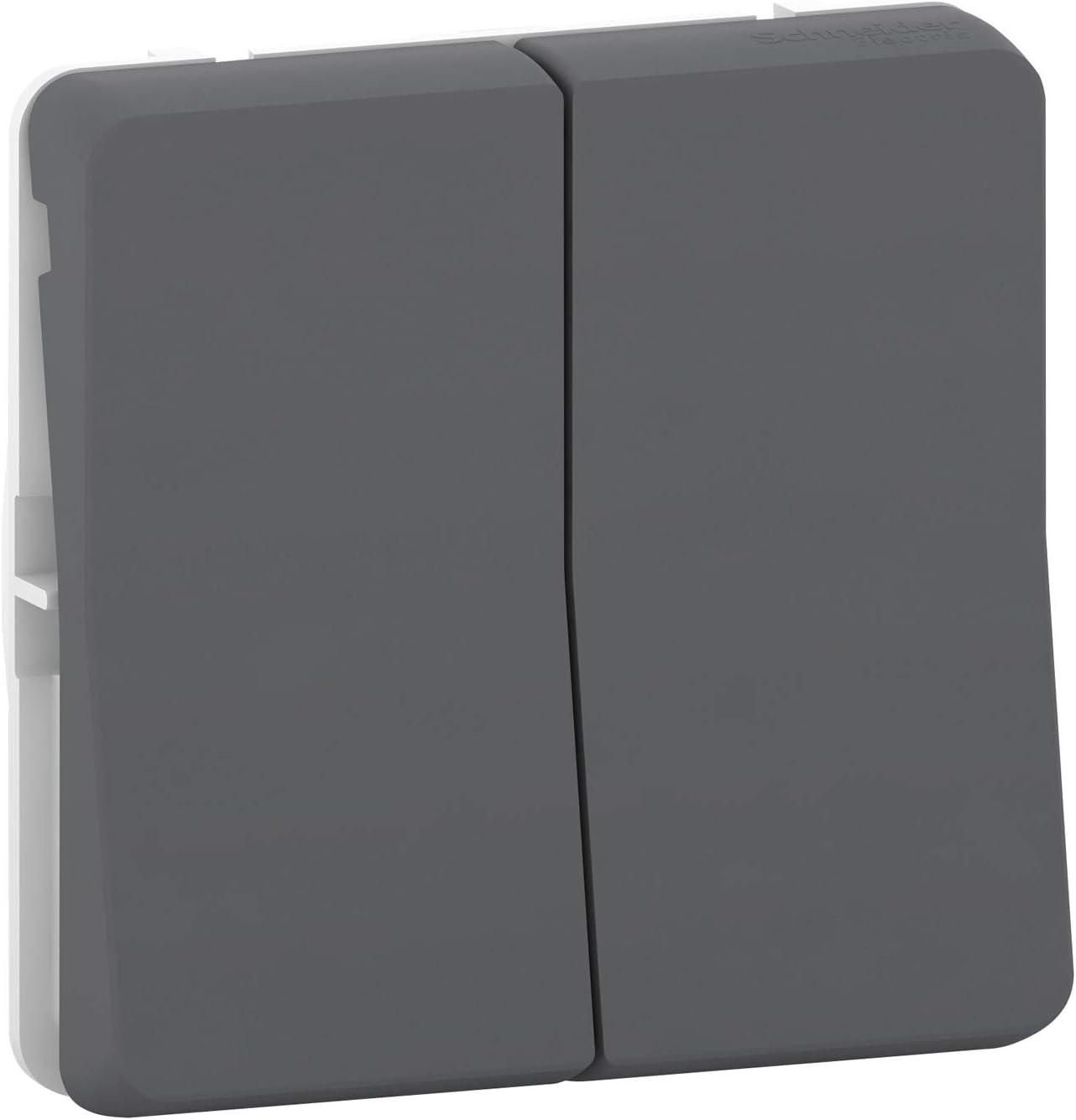 Schneider electric mur35019/ /Double va et vient gris
