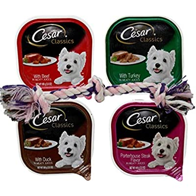 Cesar Classic Dog Food 4 Flavor 8 Can with Toy Bundle, (2) Each: Beef, Turkey, Duck, Porterhouse Steak (3.5 Ounces)