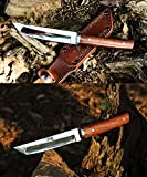 JGN Trading Japan Ninja Katana Army Tactical Dagger Knife Wood Handle for Outdoor Survival Hunting Rescue High Hardness Tanto Fixed Blade Camp Knives