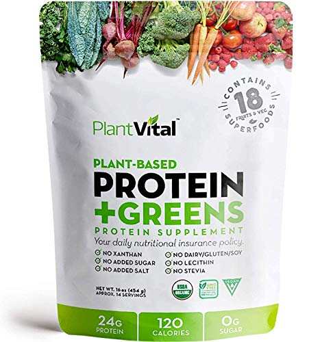 New! Plant Based Protein Powder w 18 SUPERFOODS, Veggies & Probiotics: Kale, Beets, Spirulina & More. Vegan, All BCAA's, Organic, Non-GMO, Gluten Free. Double (1 Pouch)