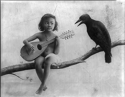 Strange Photo Little Nude Black Girl Mandolin On Tree Limb Crow C1895 Natural Hairstyles Runnerswayorg