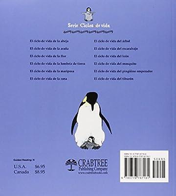 El Ciclo De Vida Del Pinguino Emperador Ciclo De Vida / The Life Cycle: Amazon.es: Johnson, Robin, Kalman, Bobbie: Libros