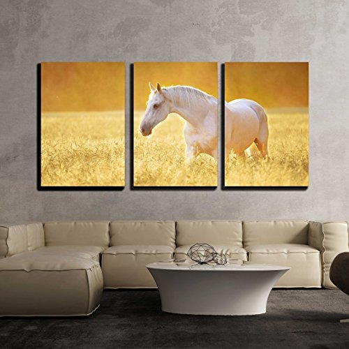 wall26 - 3 Piece Canvas Wall Art - White Orlov Trotter Horse in Rye, Golden Sunset - Modern Home Decor Stretched and Framed Ready to Hang - 16