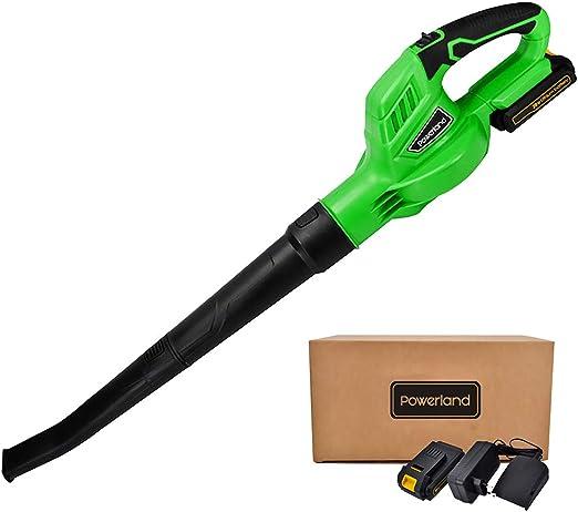 werktough Powerland B001 Soplador de Hojas a batería Incluye ...