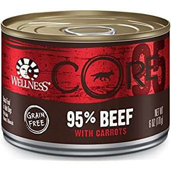 Wellness CORE 95% Natural Wet Grain Free Canned Dog Food, Beef & Carrots, 6-Ounce Can (Pack of 24)