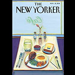 The New Yorker, November 21st 2011 (Nicholas Schmidle, Thomas Mallon, James Surowiecki)