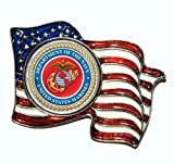 Armed Forces Colorized Quarter Flag Pin - Marines