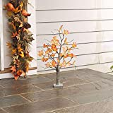 BrylaneHome 24'' Pre-Lit Harvest Tree (Multi,0)