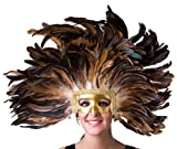Zucker Feather Coque Headdress Wall Decor Accent