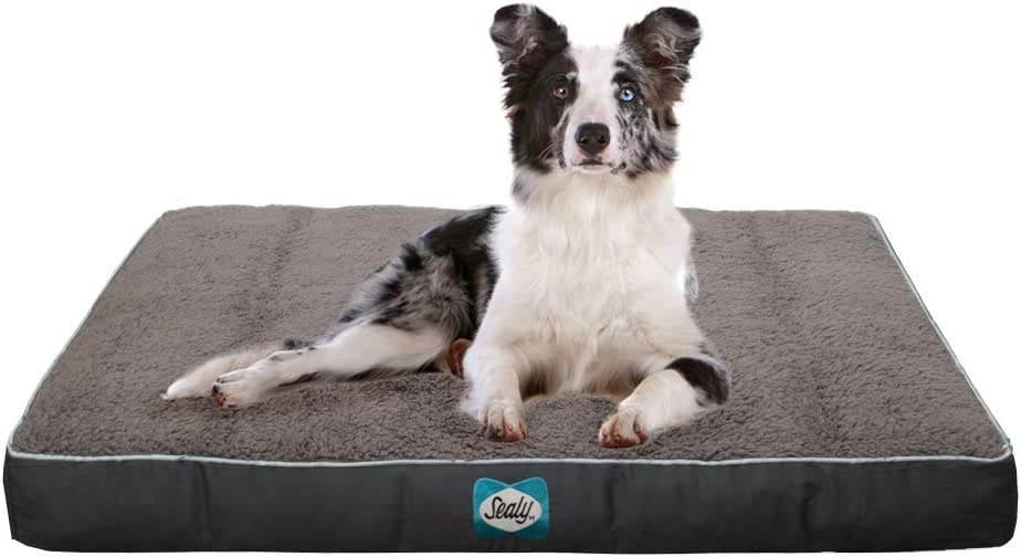 Sealy Cushy Comfy Pet Dog Bed   Memory and Orthopedic foam with Cooling Energy Gel Dog Pet Bed with machine washable Sherpa top and water resistant inner liner, Large Grey
