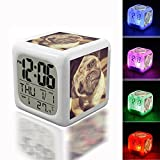 Best unknown In Breeds - Digital Alarm Thermometer Night Glowing Cube 7 Colors Review