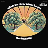 Whatcha See Is Whatcha Get [LP]