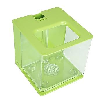 Socialme-EU Mini Tanque de Peces de Plástico Acuario Ambiental Creativo con Acuario Sistema de Filtro Automático Decoración Suministros(Verde): Amazon.es: ...