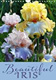 Amazon / Calvendo Verlag GmbH: Beautiful Iris 2018 12 Gorgeous Iris Portraits in the Garden Calvendo Nature (Martina Cross)
