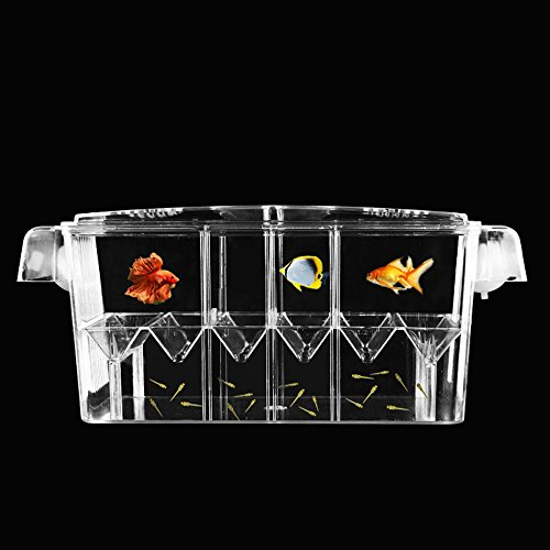 Petzilla PBI-3 Aquarium Fish Breeder Box Hatchery, 8.1''x3.5''x4.1'' by Petzilla