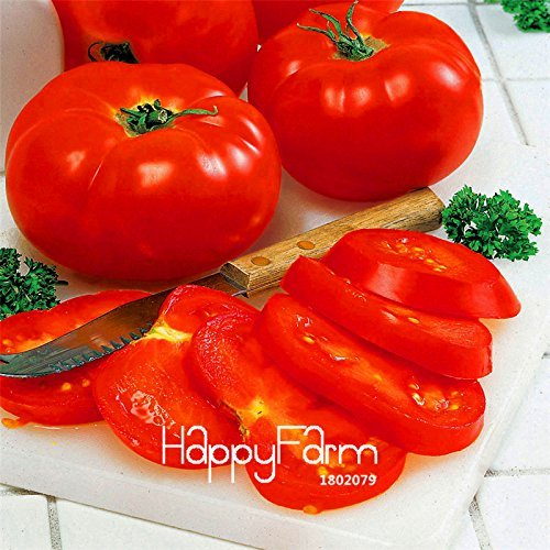 Sale!Big Beef Hybrid Tomato Seeds, 100 Seeds / Bag, Extra-large, Extra-meaty, Extra-tasty Tomato,#74R454