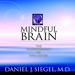 The Mindful Brain Speech