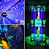 Led Black Light, 10w Portable Tube for Blacklight