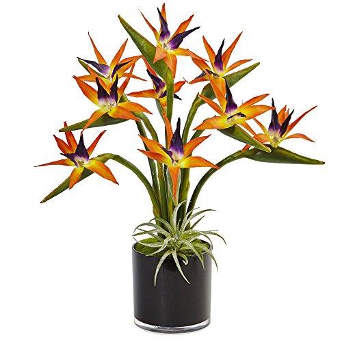 Nearly Natural Bird of Paradise Silk Arrangement in Cylinder, Orange - Tropical Silk Flower Arrangement