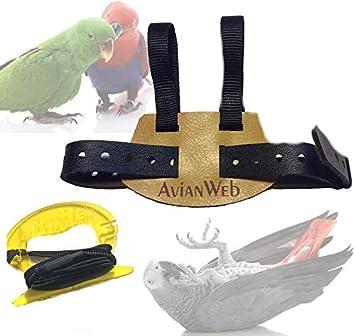 Avianweb EZ - Arnés para pájaros con Correa: Amazon.es: Productos ...