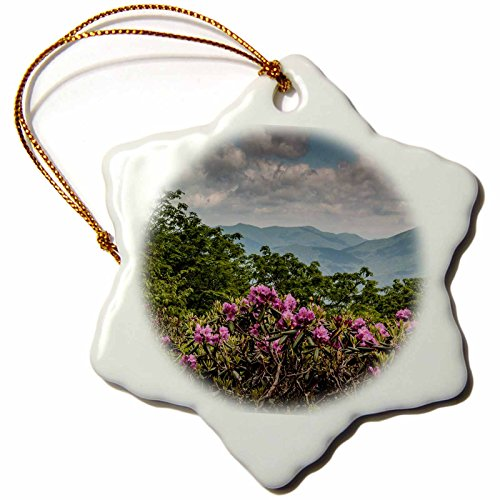 3dRose Danita Delimont - Mountains - Catawba Rhododendron, Craggy Gardens, Blue Ridge Parkway, NC, USA - 3 inch Snowflake Porcelain Ornament (orn_208390_1) (Ornaments Garden Christmas Ridge)