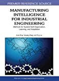 Manufacturing Intelligence for Industrial Engineering : Methods for System Self-Organization, Learning, and Adaptation, Wang, Huaiqing and Zhou, Zude, 1605668648