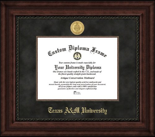Campus Images ''Texas A&M University Executive Diploma'' Frame, 12.5'' x 16'' by Campus Images