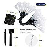 Coresmo Solar String Light 19.8ft 30 LED Water Drop Fairy Garden Lights for Christmas (Warm White)