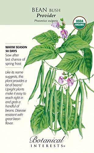 Botanical Interests, Seed Bean Bush Provider Organic