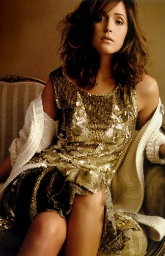 Rose Byrne 11x17 HD Photo Poster Hot Actress #03