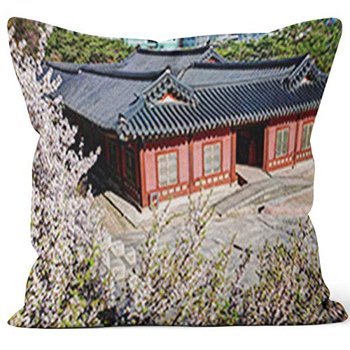 - Nine City Korean Palace Changgyeonggung Throw Pillow Cover,HD Printing for Sofa Couch Car Bedroom Living Room D??cor