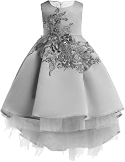 Baby Toddler Girl Wedding Princess Dress Clothes 1-6 Years Old Child Kid Floral Pageant Gown Birthday Party Dress
