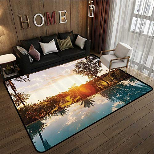 (Indoor Outdoor Rugs,Hawaiian Decorations,Home with Swimming Pool at Sunset Tropics Palms Private Villa Resort Scenic View,Orange Teal 55