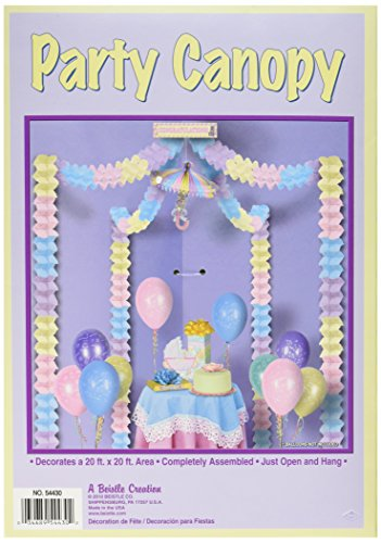 Shower Party Canopy Accessory count product image