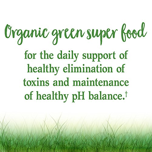 Garden of Life Vegan Green Superfood Powder - Raw Organic Perfect Whole Food Dietary Supplement, Original, 7.4oz (209g) Powder by Garden of Life (Image #1)