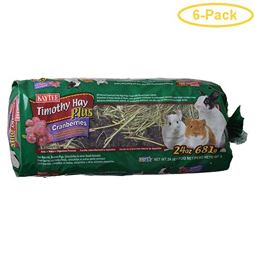 Kaytee Timothy Hay Plus Cranberries - Small Animals 24 oz - Pack of 6