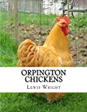 Orpington Chickens: From The Book of Poultry