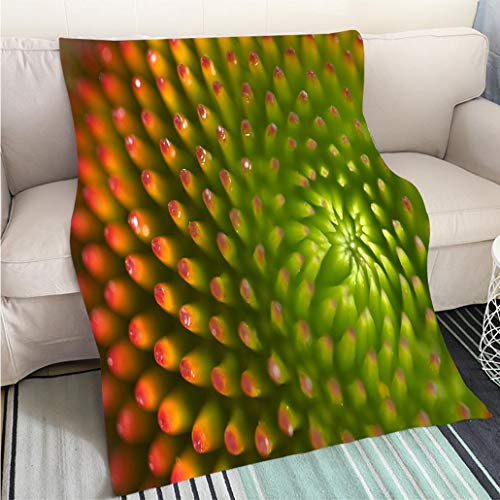 BEICICI Weave Pattern Printed Multicolor Custom Design Macro Detail of Echinacea Flower Sofa Bed or Bed 3D Printing Cool Quilt