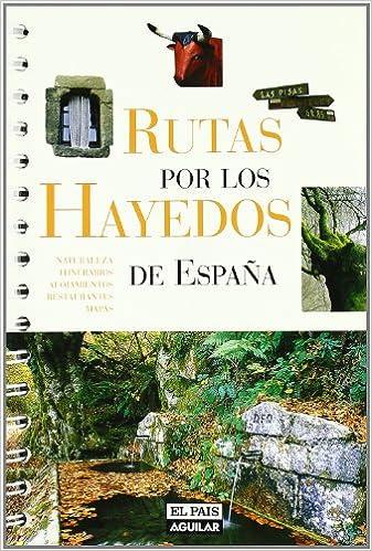Rutas por los Hayedos de España: Amazon.es: Alonso, Juanjo: Libros