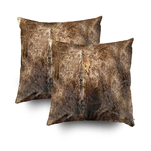 EMMTEEY Home Decor Throw Pillowcase for Sofa Cushion Cover,Halloween Faux Brown Fur Print Decorative Square Accent Zippered and Double Sided Printing Pillow Case Covers 20X20Inch,Set of 2 -