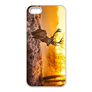 linJUN FENGFlying Eagle Hight Quality Plastic Case for Iphone 5s