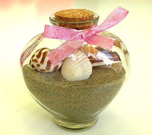 Seashell Jar