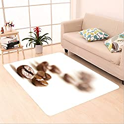 Sophiehome skid Slip rubber back antibacterial Area Rug coffee beans draw a zigzag line isolated on white soft focus 83173009 Home Decorative
