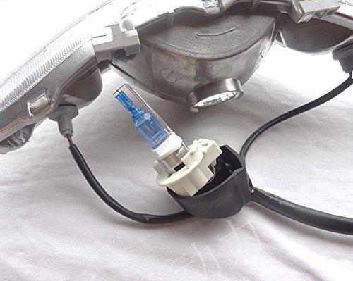 12V 50W wei/ß Xenon Motorrad Roller Scheinwerfer Gl/ühbirne BA20d HID Lampe Licht Goldenapplestore
