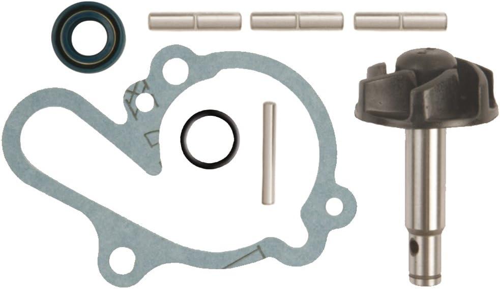 Vicma Pompe /à Eau Repair Kit for Minarelli Le